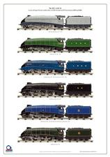 ACE Trains A4 Locomotives Large Wall Display Poster image 1
